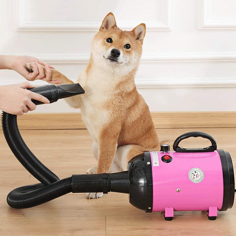 Mopoq Secador de pelo para mascotas de alta potencia, velocidad y ...
