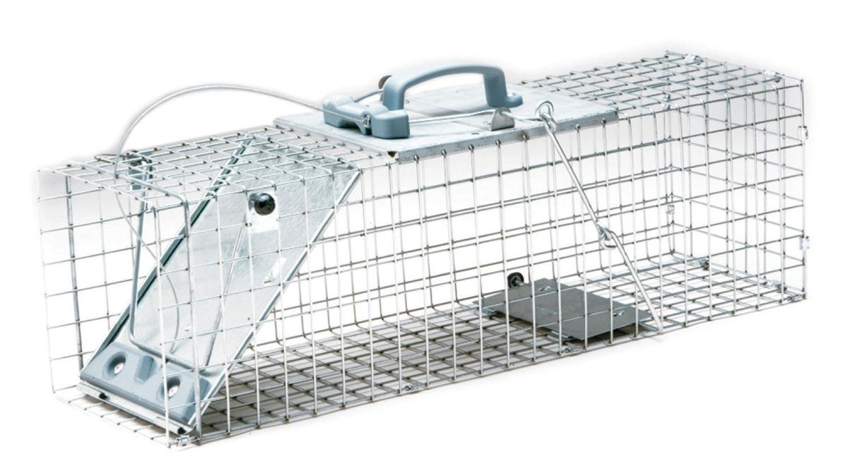 Havahart 1084 Easy Set One-Door Cage Trap for Rabbits, Skunks, Minks and Large Squirrels by Havahart