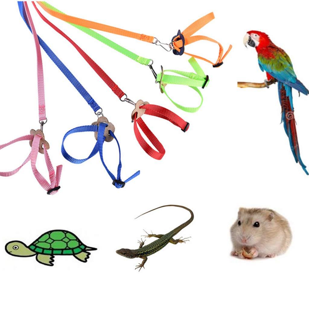 Tortuga Lagarto Caingmo 8 Correas para Mascotas Cuerda de tracci/ón port/átil para h/ámster de Loro