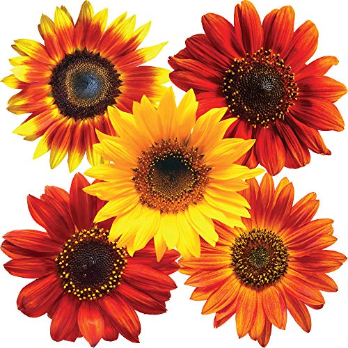 StikArt Removable Sunflower Wall Decals Printed on Waterproof Canvas (14 Yellow, Orange & Red Flowers) (Sunflower Wall Stickers)