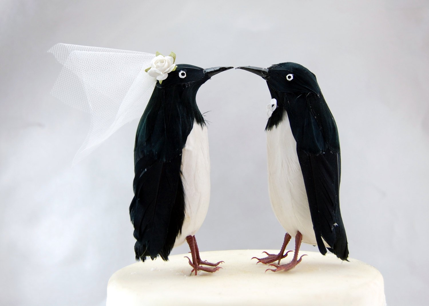 Amazon.com: Adelie Penguin Cake Topper: \