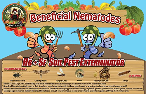 50-million-live-beneficial-nematodes-hb-sf-kills-over-200-different-species-of-soil-dwelling-and-woo