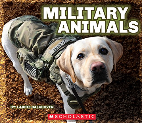 Military Animals With Dog Tags (Reading Tag)