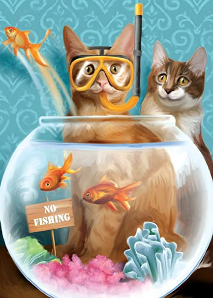 Tree Free Greetings No Fishing Funny Birthday Cards 2 Card Set Cats Multicolored