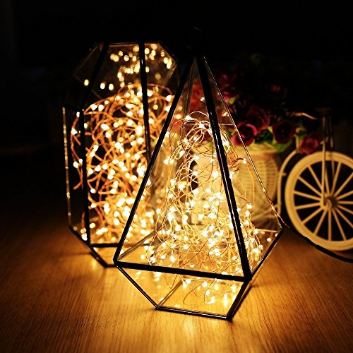 ER CHEN Color Changing LED String Lights Plug in with Remote, 39.5ft 100 LED Copper Wire Dimmable Fairy Lights 8 Modes Decorative Lights with Timer for Bedroom, Patio, Garden, Yard-Warm White&Blue by ErChen (Image #5)