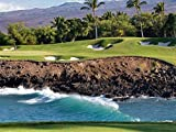 Hawaii Beach Golf Course -Oil Painting On Canvas Modern Wall Art Pictures For Home Decoration Wooden Framed (12X16 Inch, Framed)