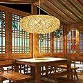Waineg BirdS Nest Chandelier, Handmade Hemp Ball Pendant Lamp Rattan Art Woven E27 Modern Study Bedroom Lighting Creative Restaurant Bar Cafe Ceiling Decoration Pendant Light Fixtures 110v 220v