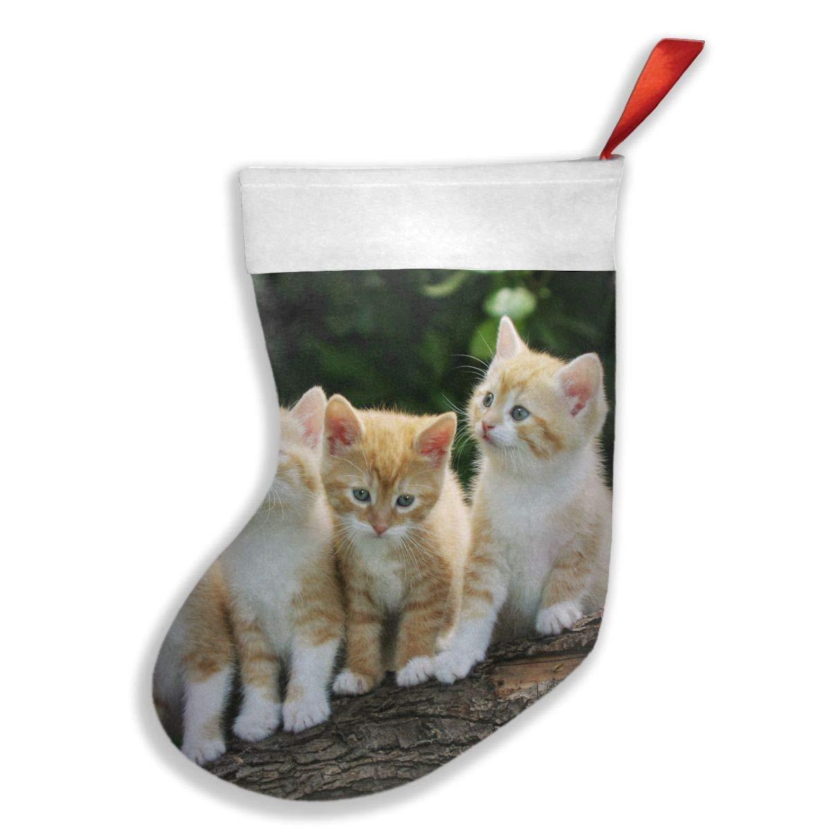 PO1 UP Cats Animal Christmas Stocking