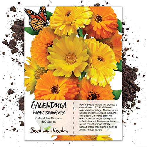 Package of 500 Seeds, Calendula Pacific Beauty Mixture (Calendula officinalis) Non-GMO Seeds by Seed ()
