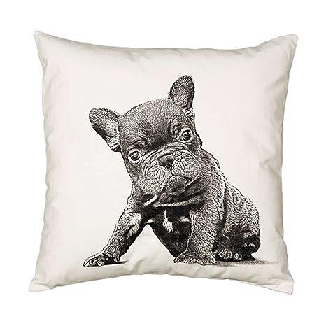 Amazon.com: Eric & Christopher – Protector de almohada ...
