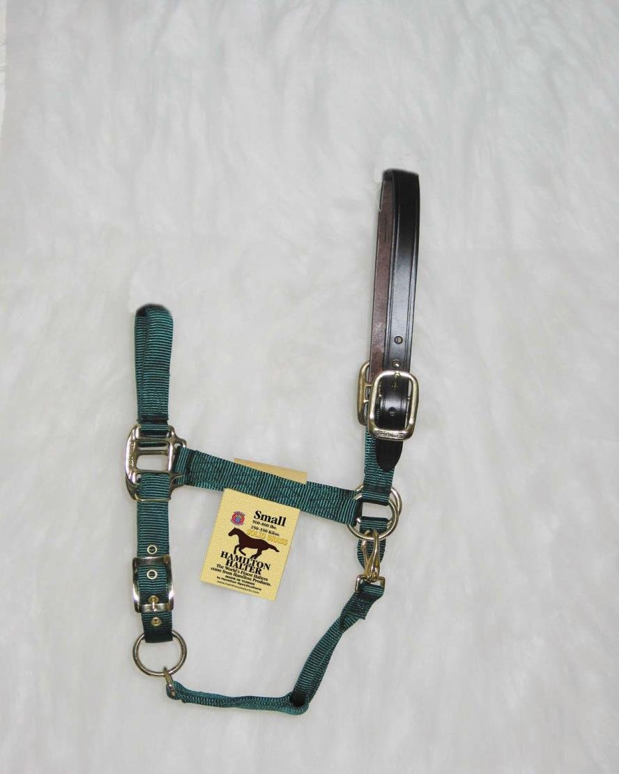 ADJUSTABLE HORSE HALTER WITH LEATHER HEADPOLE - SMALL - HUNTER GREEN