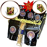 3dRose Danita Delimont - Cactus - Spain, Canary Islands, Lanzarote, Guatiza, cactus fruit - Coffee Gift Baskets - Coffee Gift Basket (cgb_257888_1)