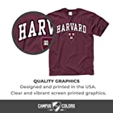 Campus Colors Harvard Crimson Arch & Logo Gameday