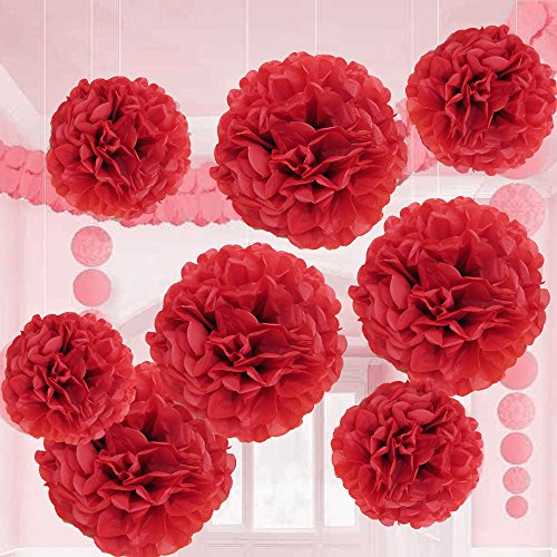 Red Tissue Balls - Valentine Red Tissue Paper Flower Pom Pom Balls.12 and 14 Inch Holiday Party Favor Flower Balls Hanging Decor Party Decoration. 8 Pack. Great DIY Kit For Parties,Birthdays,Weddings,Bridal Showers Etc.