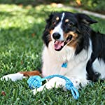 Pacific Pups Products supporting pacificpuprescue.com dog rope toys for aggressive chewers-set of 11 nearly indestructible dog toys-bonus giraffe rope toys-benefits non profit dog rescue. 14