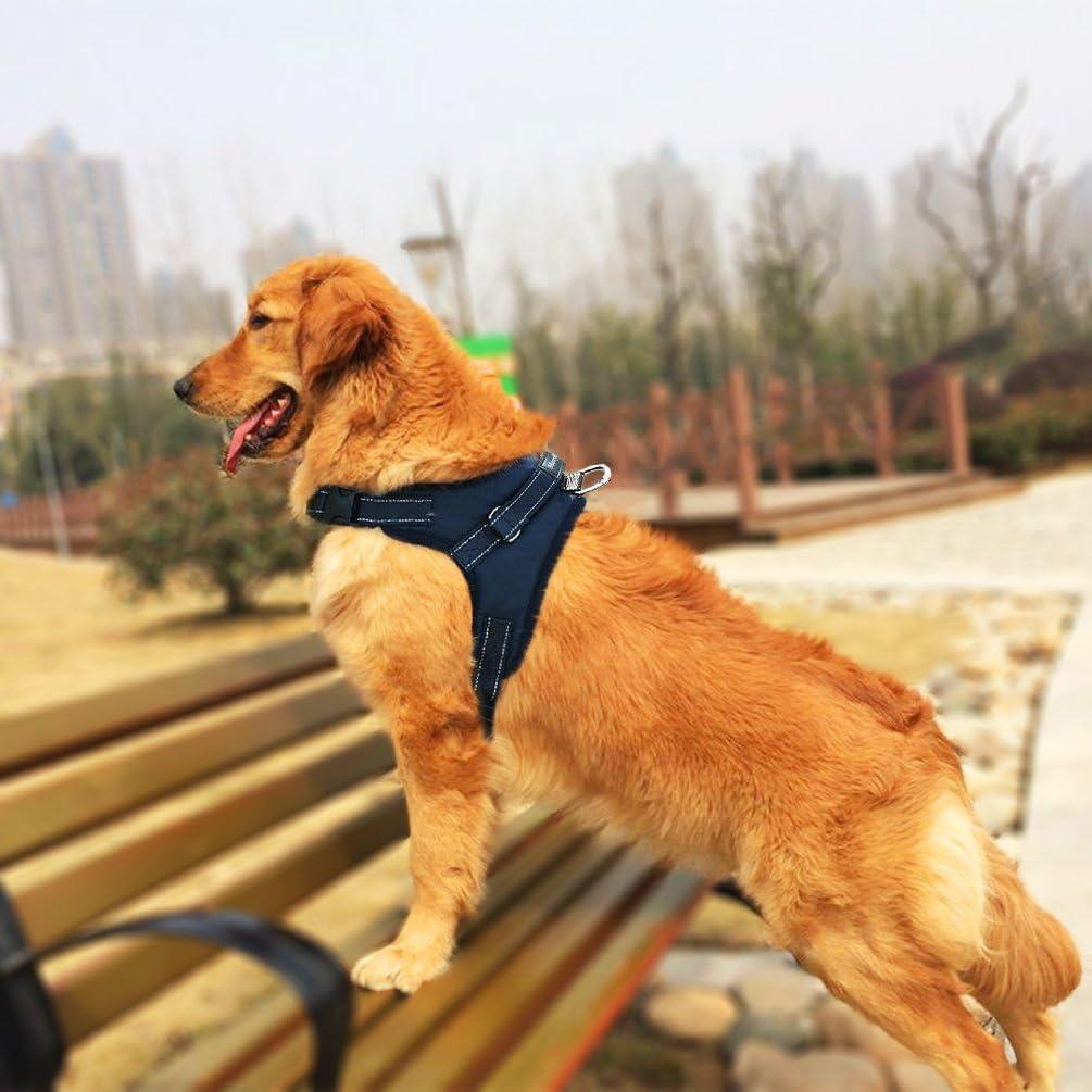 MerryBIY Arnés del Animal Doméstico Pet Harness Perro Collar Chaleco para Mascotas en el Pecho Correas con la Manija Accesorio Cuerda Lo Mejor para Pasear(Negro, L): Amazon.es: Productos para mascotas