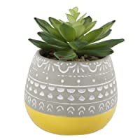 Flora Bunda Artificial Succulent in 2 Tone Mayan Ceramic Pot,Yellow for Desk, Office...