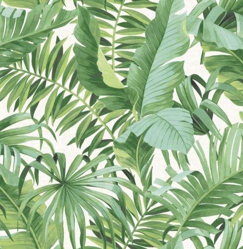 Tropical Leaf Wallpaper Palm Tree White Green A Street Prints Paste Th
