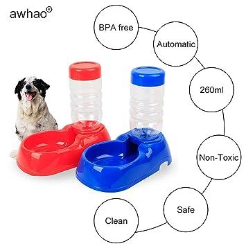 Automática Pet Cat Dispensador de agua plato de comida Tazón alimentador Botella alimentador Nuevo - Color aleatorio: Amazon.es: Productos para mascotas