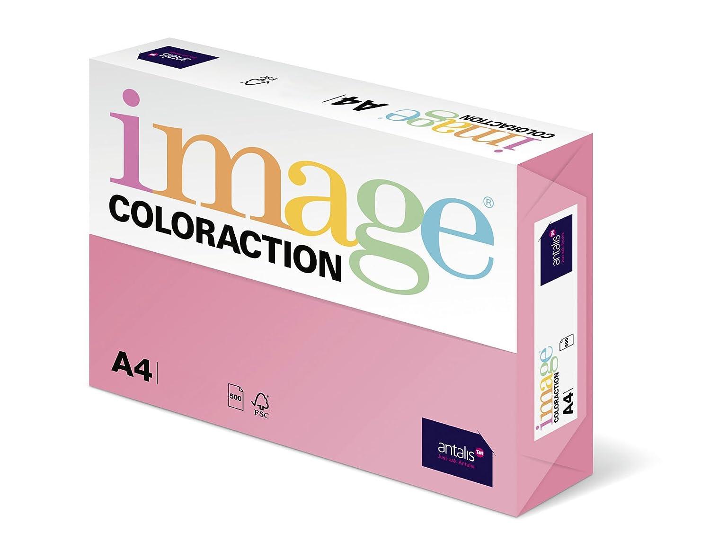 Coloraction Antalis 838A 120S - Carta per fotocopie, 14 DIN, formato A4, 120 g/m², colore: Rosa corallo 838A 120S 14