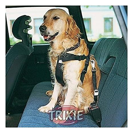 Arnes con cinturon de Seguridad para perros TRIXIE: Amazon.es ...
