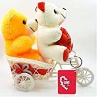 ME&YOU Romantic Cycle Gifts for Wife Girlfriend On Birthday, Anniversary, Karwa chauth, Valentine's Day IZ18CyTWCK-001