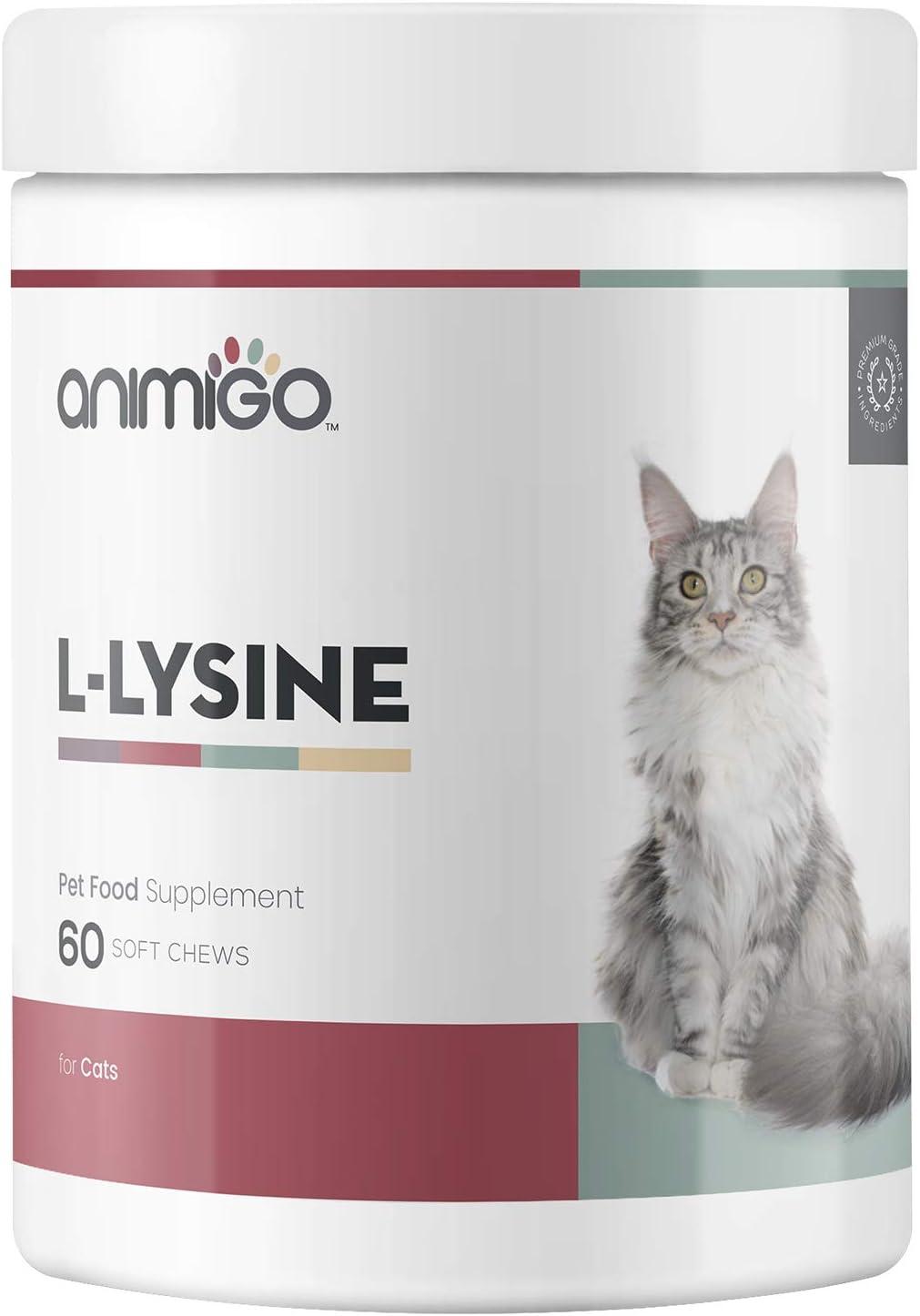 Animigo L-Lisina para Gatos | Suplemento Natural Inmunitario para la Defensa | L-Lisina, Levadura de Cerveza y Pectina Cítrica | Rico en Aminoácidos, Vitaminas y Minerales | 60 Cápsulas Masticables