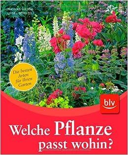 Welche pflanze  Welche Pflanze passt wohin?: Amazon.de: Ursel Borstell, Thomas ...