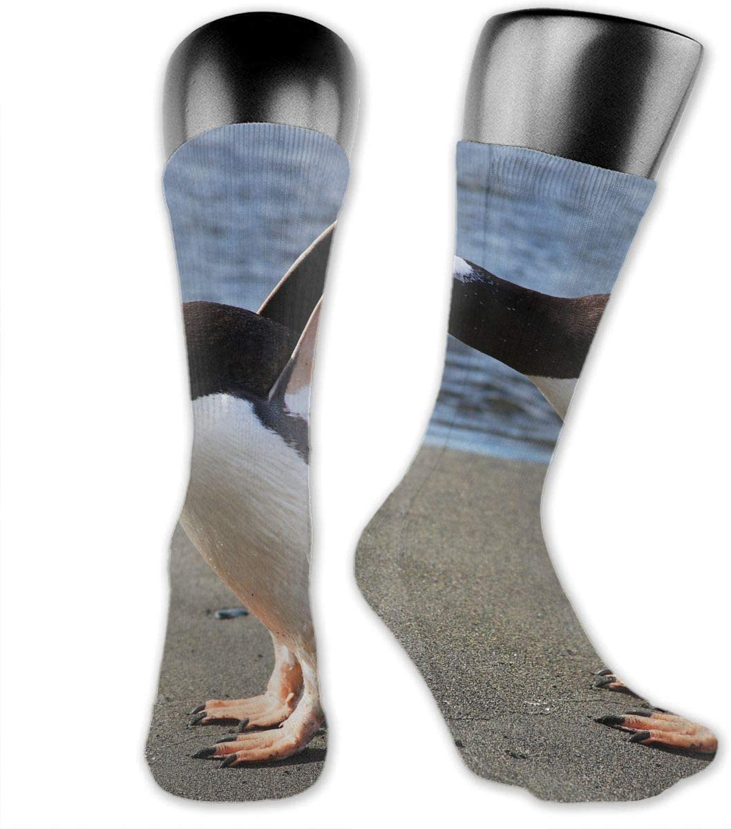 OLGCZM Penguin Men Womens Thin High Ankle Casual Socks Fit Outdoor Hiking Trail