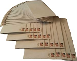 20 Forever Stamped Envelopes -Number 10 Security Envelopes (Stamp and Envelope Design May Vary)