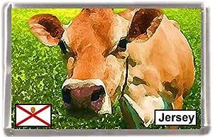 Jersey vaca regalo Souvenir imán para nevera: Amazon.es: Hogar