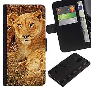 All Phone Most Case / Oferta Especial Cáscara Funda de cuero Monedero Cubierta de proteccion Caso / Wallet Case for Samsung Galaxy S5 Mini, SM-G800 // Cubs Lion African Savannah Nature Animal