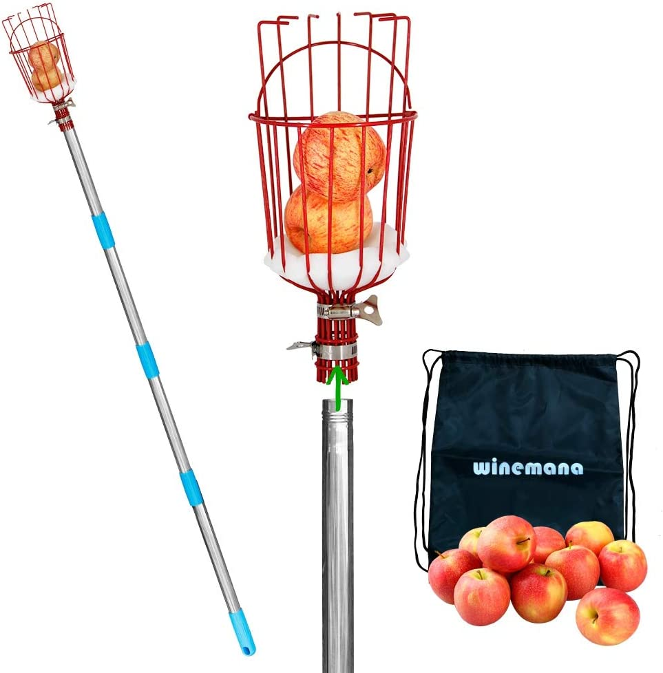 winemana Fruit Picker with Cushion and 8 FT Telescopic Extension Pole, Professional Metal Tree Fruit Picker Pole with a Storage Bag, 9 FT Fruit Catcher Basket for Any Kinds of Fruits