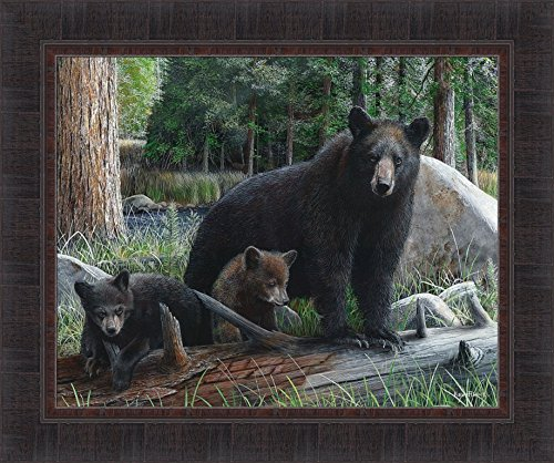 - Home Cabin Décor New Discoveries by Kevin Daniel 20x24 Black Bear Mama Cubs Framed Art Print Picture