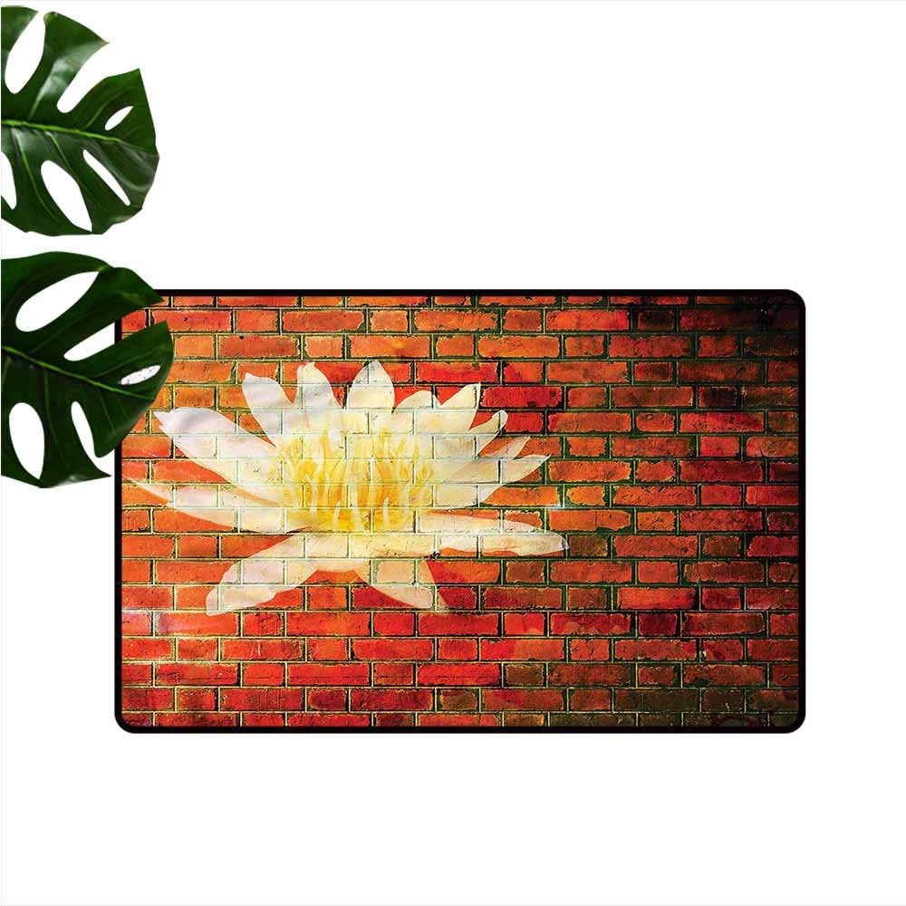 Amazon Com Homedd Entrance Doormat Brick Wall Graffiti