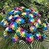 Ncient 20/50/100 Semi Sementi di Margarita di Color Di Arcobaleno Semi di Fiori Rari Fiori Piante per Orto Giardino… 13 spesavip