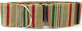 "product image for Diva-Dog 'Northern Lights' 2"" Wide Chainless Martingale Dog Collar"