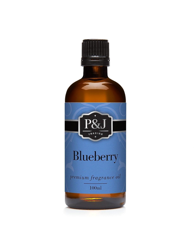 Blueberry Fragrance Oil - Premium Grade Scented Oil - 100ml/3.3oz