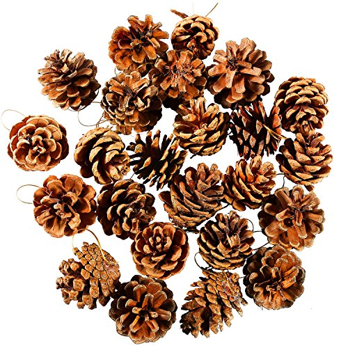 Coobey 24 Pieces Pine Cones Ornament Natural PineCones With String Pendant Crafts for Gift Tag Tree Party Hanging Decoration (Natural)