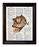 Dictionary Art Print - Kitty Cat Tearing Through the Page - Printed on Recycled Vintage Dictionary Paper - 8