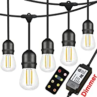 Angroc 49-Foot LED String Light with RF Wireless Remote Control Dimmer
