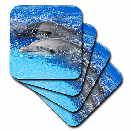 3dRose cst_37746_2 Two Dolphins Surfacing Together at Oceanographic Aquarium N Valencia, Spain Soft Coasters, Set of 8 by 3dRose