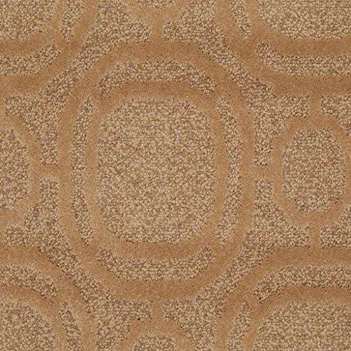 14' Nylon Lanterns - Ornamental Cut & Loop 45 oz Pattern Indoor Area Rug (12'x14', Brass Lantern)