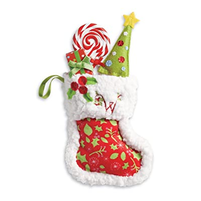 American Girl WellieWishers Stocking With Accessories for Doll: Toys & Games