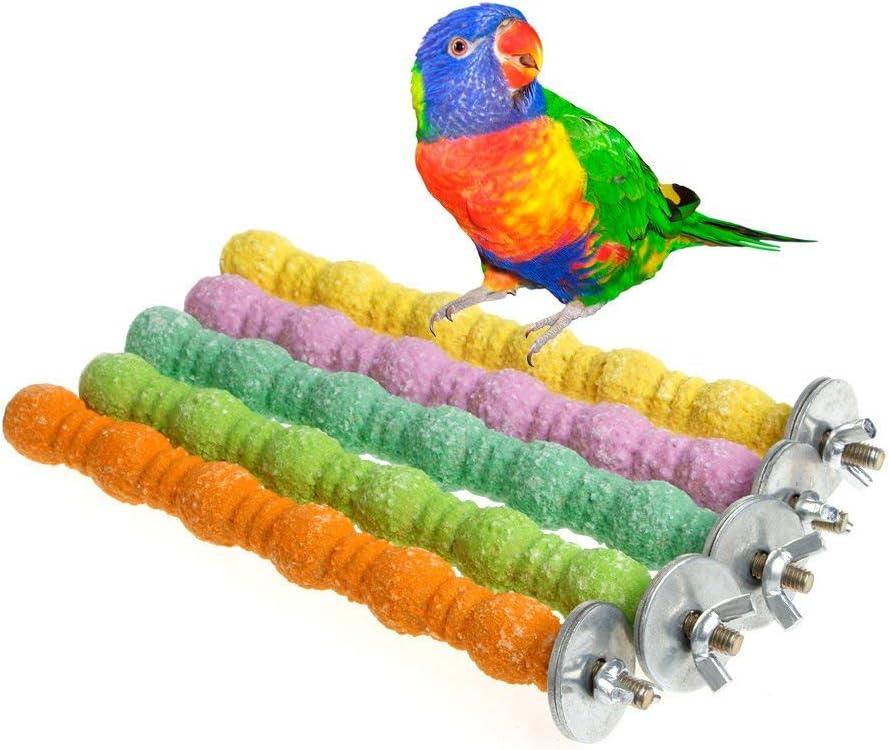 Loro y Calabaza Soporte para Perca para p/ájaros p/ájaros Juguete para Masticar Suministros para Mascotas mnoMINI Plataforma para Colgar en la Jaula de decoraci/ón