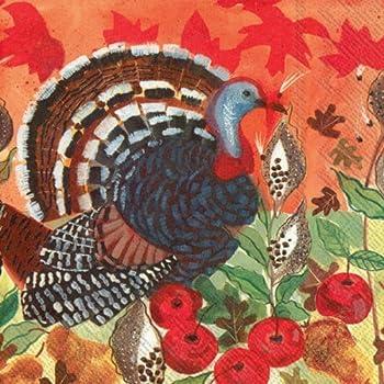 ideal home range 20 count decorative paper napkins luncheon turkeys - Decorative Paper Napkins