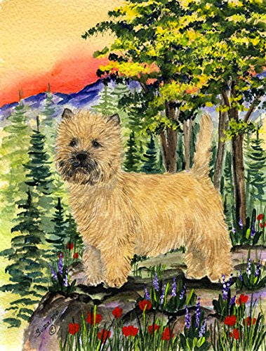 Caroline's Treasures SS8229GF Cairn Terrier Flag, Small, Multicolor
