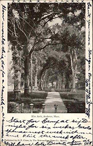 (Elm Arch Andover, Massachusetts Original Vintage Postcard )