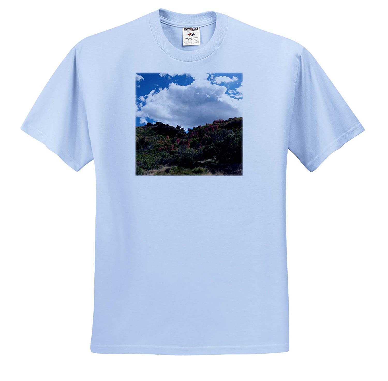 ts/_320086 Adult T-Shirt XL The Beautiful Fall Foliage on The top of a Pine Valley Mountain 3dRose Jos Fauxtographee- Mountain Top