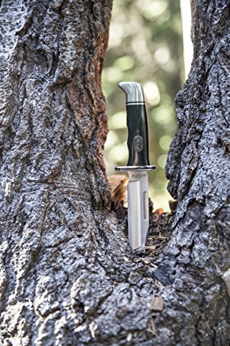 Buck-Knives-0119-Special-Fixed-Blade-Knife-with-Leather-Sheath